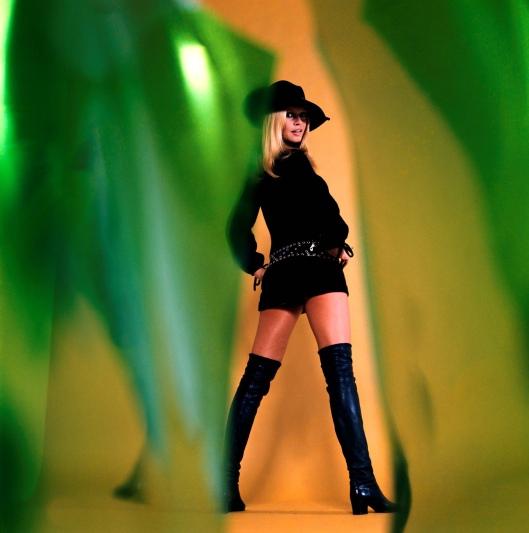 Brigitte Bardot14