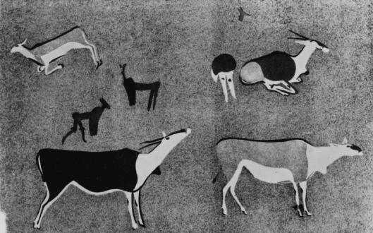 Arte rupestre em Burley Africa do Sul 01