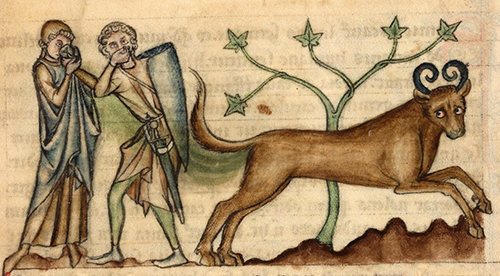 Bonnacon-Medieval-Monster-01 500px